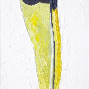 American-Redstart-Feather-animal-artist-art-painting-wildlife-Will-Eskridge-web